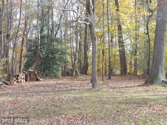 Lot-Land - UPPER MARLBORO, MD (photo 1)