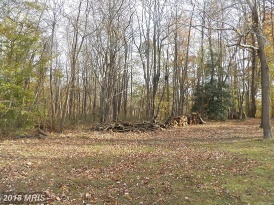 Lot-Land - UPPER MARLBORO, MD (photo 2)