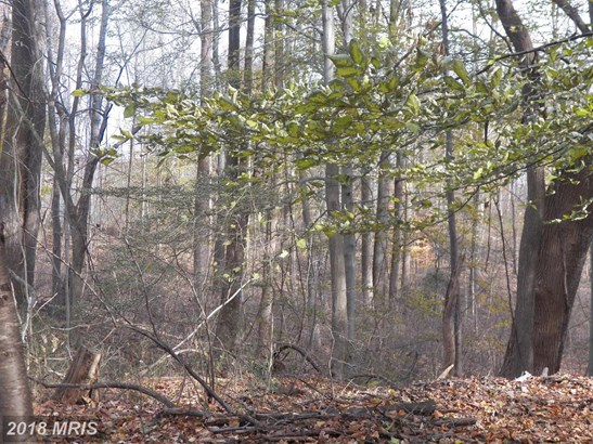 Lot-Land - UPPER MARLBORO, MD (photo 5)