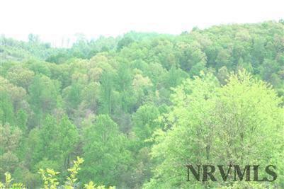 Land - Pembroke, VA (photo 4)