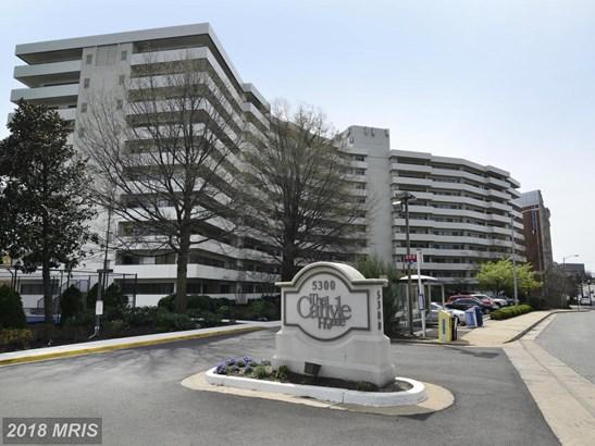 Mid-Rise 5-8 Floors, Contemporary - ARLINGTON, VA (photo 1)