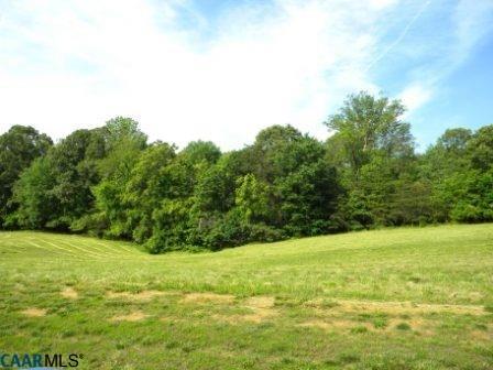 Land - EARLYSVILLE, VA (photo 4)