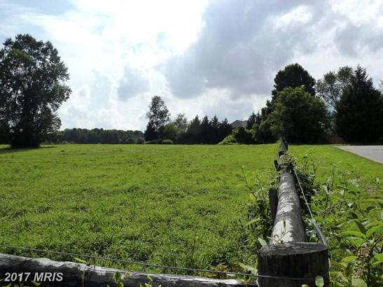 Lot-Land - DAYTON, MD (photo 3)