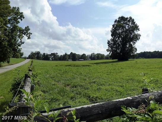 Lot-Land - DAYTON, MD (photo 4)