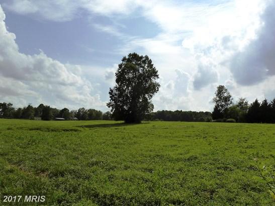 Lot-Land - DAYTON, MD (photo 5)