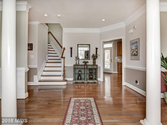 Detached, French Provincial - STAFFORD, VA (photo 2)