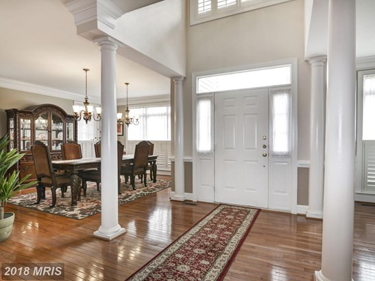 Detached, French Provincial - STAFFORD, VA (photo 3)