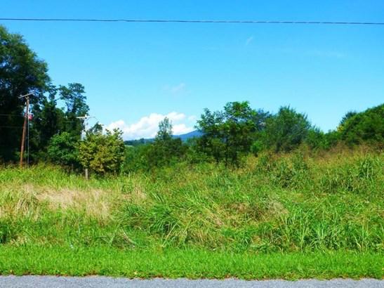 Lot, Lots/Land/Farm - Blue Ridge, VA (photo 2)