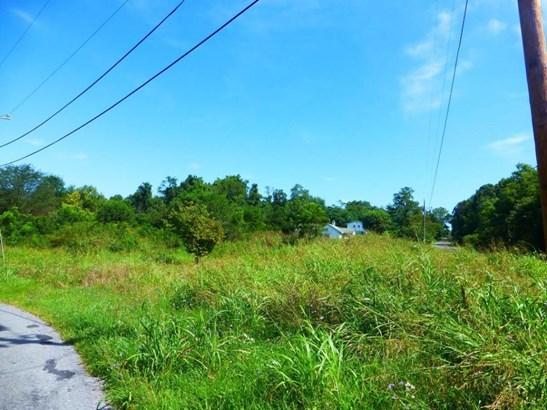 Lot, Lots/Land/Farm - Blue Ridge, VA (photo 3)