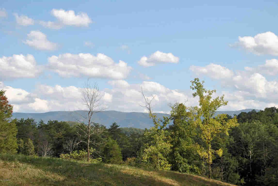 Land - Elliston, VA (photo 2)