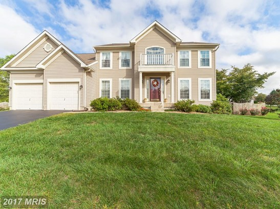 Contemporary, Detached - CHESTERTOWN, MD (photo 3)