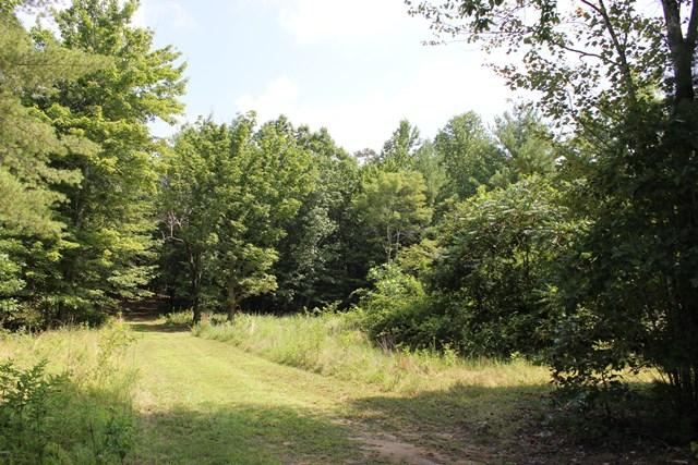 Land (Acreage), Lots/Land/Farm - Boones Mill, VA (photo 1)