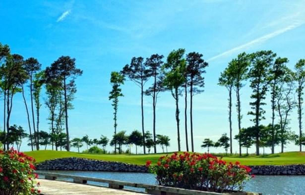 Land - Cape Charles, VA (photo 2)