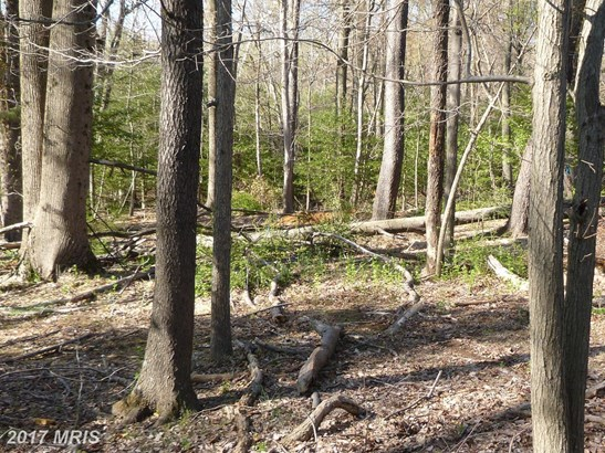 Lot-Land - GREAT FALLS, VA (photo 2)