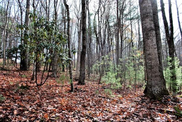 Land (Acreage), Lots/Land/Farm - Check, VA (photo 5)