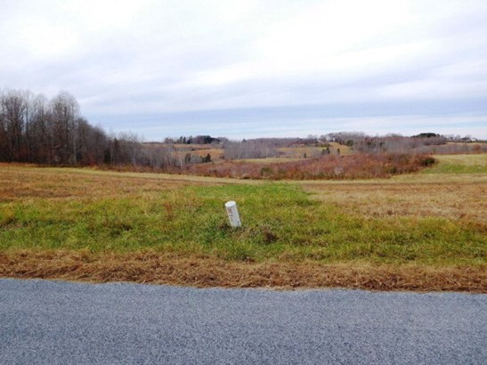 Lots/Land/Farm, Farmland, Orchard, Horse Farm, Beef Cattle - Nathalie, VA (photo 4)