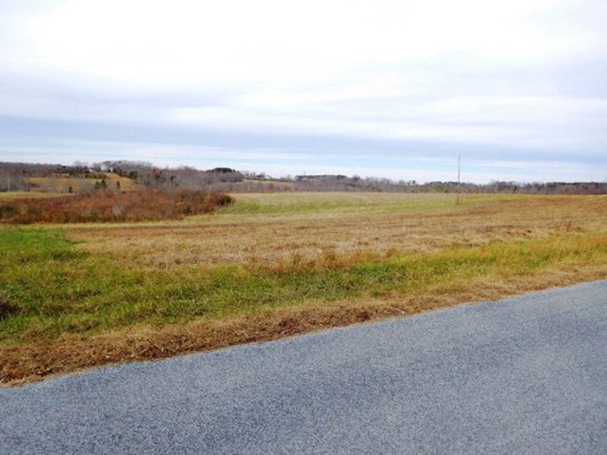 Lots/Land/Farm, Farmland, Orchard, Horse Farm, Beef Cattle - Nathalie, VA (photo 5)