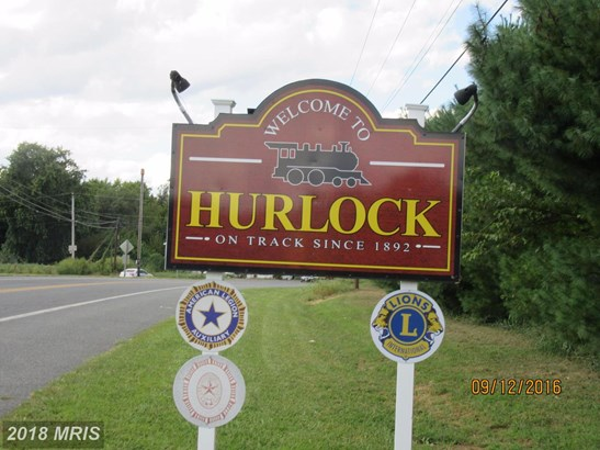 Lot-Land - HURLOCK, MD (photo 1)