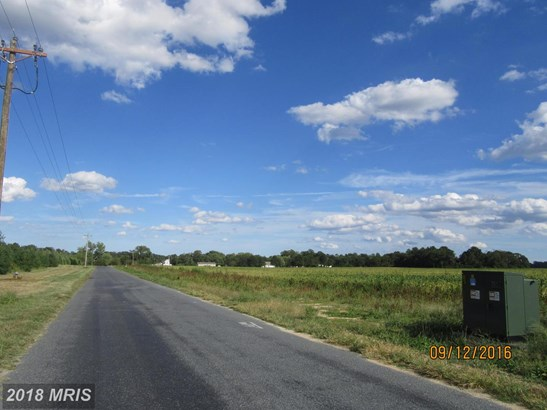 Lot-Land - HURLOCK, MD (photo 2)