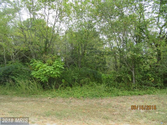 Lot-Land - HURLOCK, MD (photo 4)