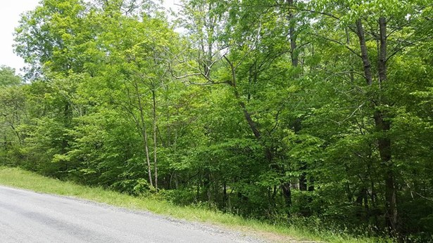 Land (Acreage), Lots/Land/Farm - Bassett, VA (photo 2)