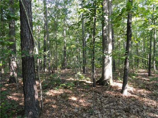 Lots/Land - North Dinwiddie, VA (photo 1)