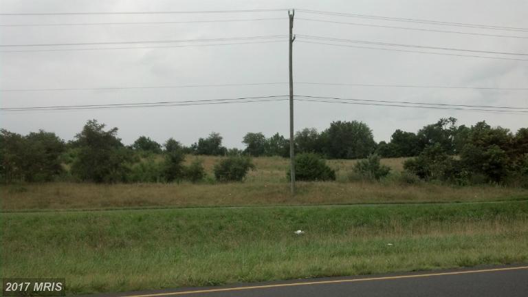 Lot-Land - WHITE POST, VA (photo 4)