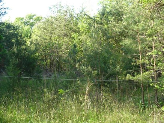 Lots/Land - Bumpass, VA (photo 3)