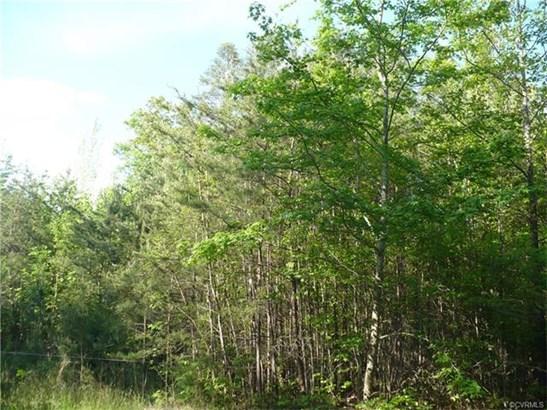 Lots/Land - Bumpass, VA (photo 5)