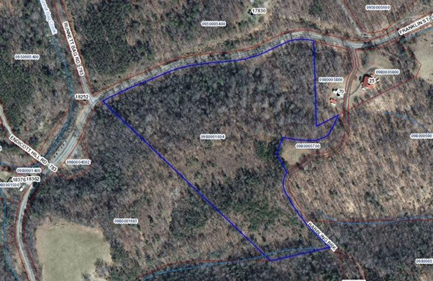 Land (Acreage), Lots/Land/Farm - Ferrum, VA (photo 1)