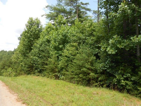 Lot, Lots/Land/Farm - Callaway, VA (photo 5)