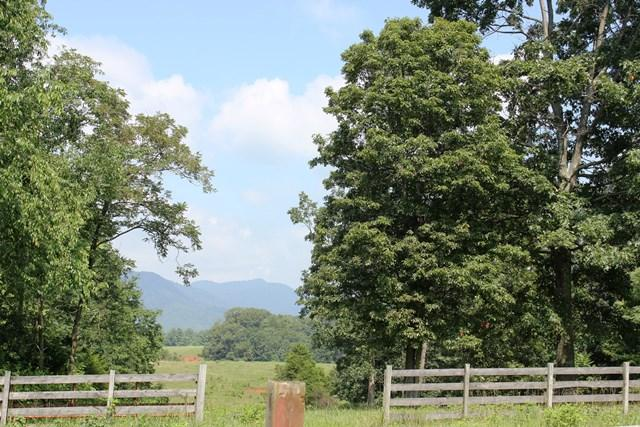 Land (Acreage), Lots/Land/Farm - Boones Mill, VA (photo 4)