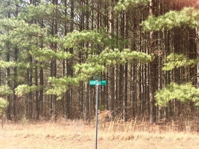 Residential, Lots/Land/Farm - Boydton, VA (photo 3)