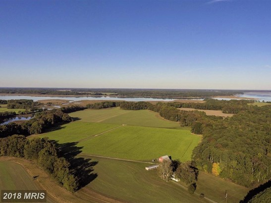 Lot-Land - HURLOCK, MD (photo 1)
