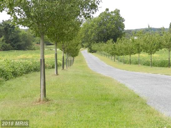 Farm House, Detached - CENTREVILLE, MD (photo 2)