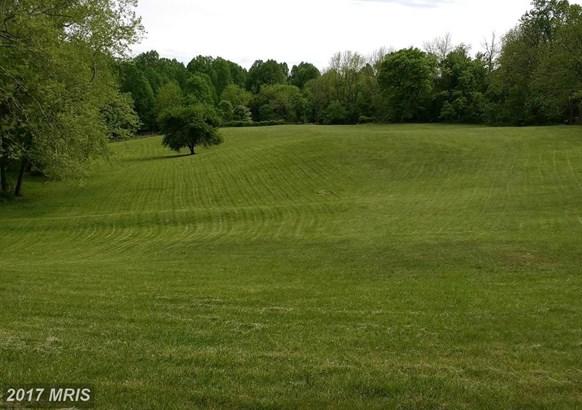 Lot-Land - BRINKLOW, MD (photo 3)