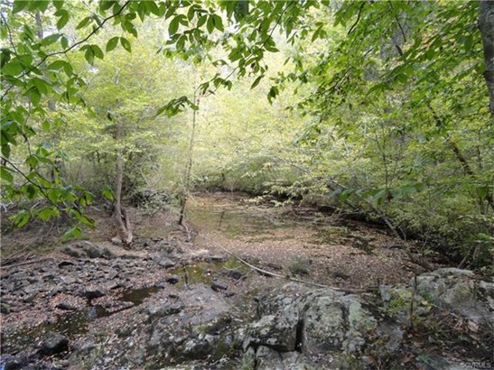 Lots/Land - Mc Kenney, VA (photo 2)
