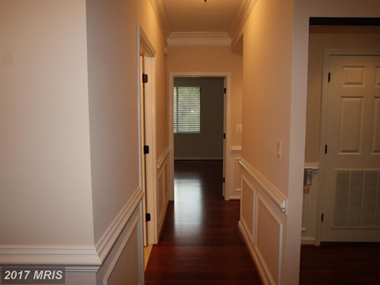 Mid-Rise 5-8 Floors, Colonial - SILVER SPRING, MD (photo 3)