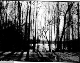 Lot-Land - BUMPASS, VA (photo 1)