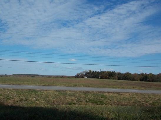 Lots/Land/Farm - Residential, Commercfial/Industrial, Farmland (photo 3)