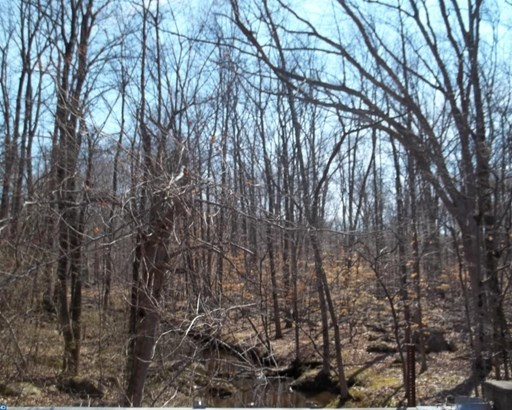 Lot-Land - UPPER BLACK EDDY, PA (photo 3)