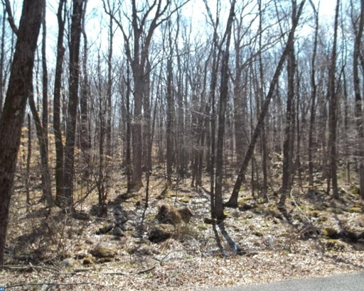 Lot-Land - UPPER BLACK EDDY, PA (photo 5)