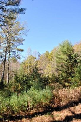Lots/Land - Riner, VA (photo 1)