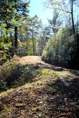 Lots/Land - Riner, VA (photo 2)