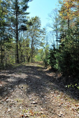 Lots/Land - Riner, VA (photo 4)