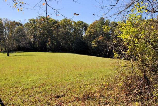 Lots/Land - Riner, VA (photo 5)