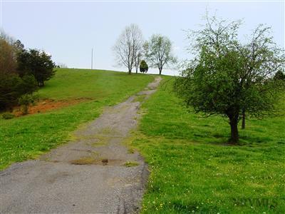 Lots/Land - Pearisburg, VA (photo 3)