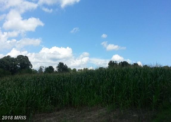 Rancher, Detached - EDINBURG, VA (photo 5)