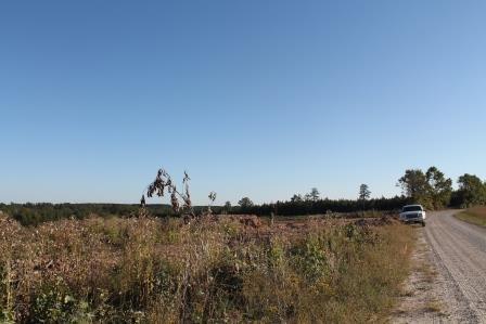 Land/Lots - Kenbridge, VA (photo 4)