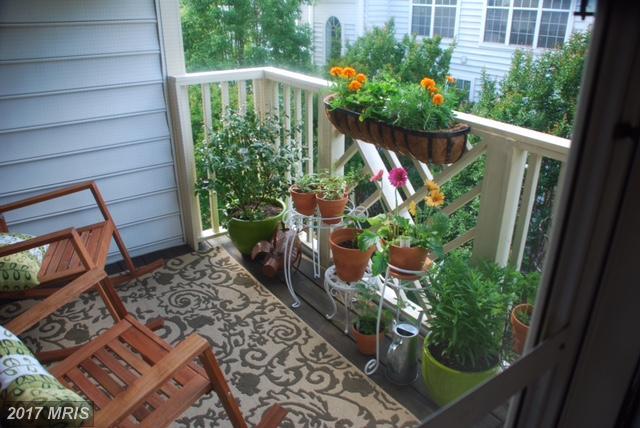 Garden 1-4 Floors, Traditional - ALEXANDRIA, VA (photo 4)